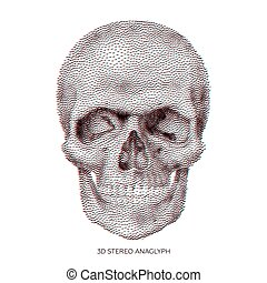 Skull 01 - Stylized stereo anaglyphic 3D Bony skeleton of...