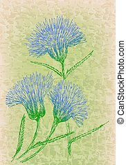 Cornflowers on grunge texture. Vintage floral decor.