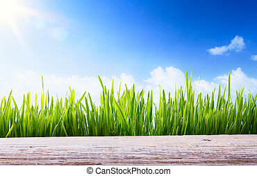 Art abstract spring or Summer background with green grass and wooden board