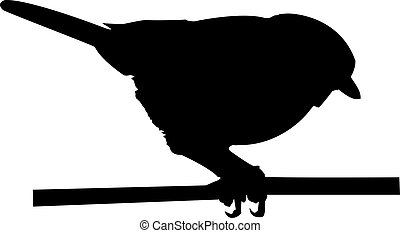 Finch - a silhouette of a finch on a branch