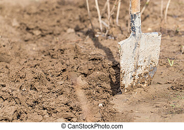 Shovel in the soil