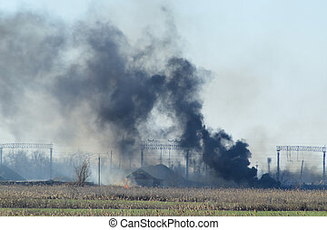 Fire on irrigation canals. Burning dry grass and cane fields...