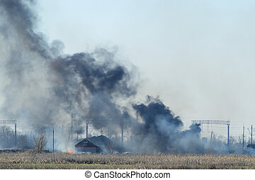 Fire on irrigation canals Burning dry grass and cane fields...
