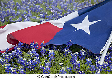 Texas flag among bluebonnet flowers on bright spring day -...
