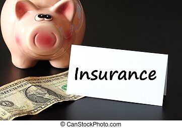 insurance concept with piggy bank and money on black...