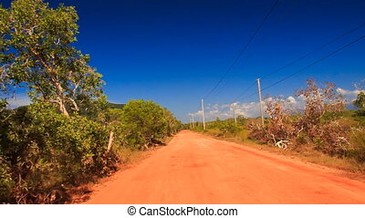 Camera Moves along Ground Road Trees High-voltage Line -...