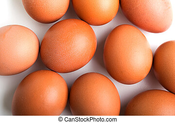 Egg food - Brown chicken egg food white background isolated