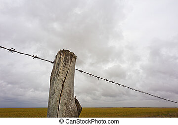 Farm Fence Line - Close up of the fence line to a farmers...