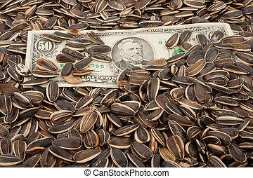 dólares, Sementes, girassol