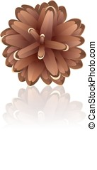 Pinecone on a white background, vector