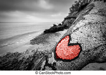 Heart carved into fallen tree trunk on wild beach and painted red. Love