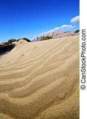 abstract yellow dune beach hil and mountain lanzarote spain...