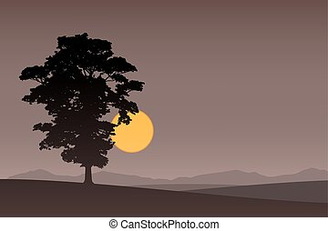 Lone Tree - A Lone Tree with Dark Sunset, Sunrise