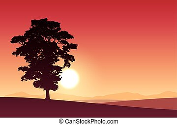 Lone Tree - A Lone Tree with Red Sunset, Sunrise