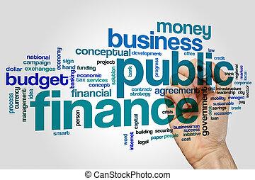 Public finance word cloud concept