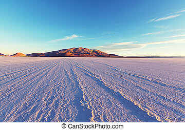 Salinas in Bolivia - Salt flat in Bolivia