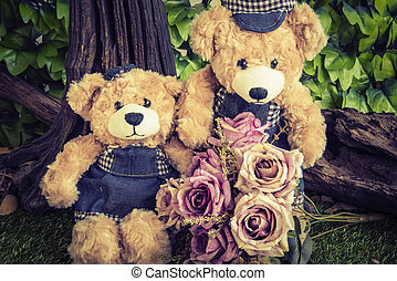 osos, rosa, pareja, jardín,  teddy