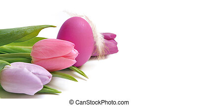 tulips and easter egg - pink easter egg and tulips on white...