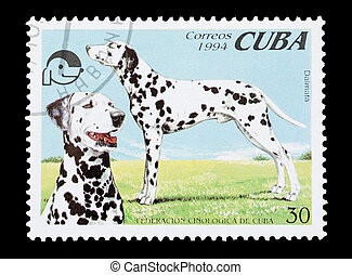 dalmatians - mail stamp printed in Cuba featuring pedigree...