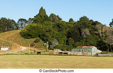 Wool Shed - Green wool shed with some bush behind it on a...