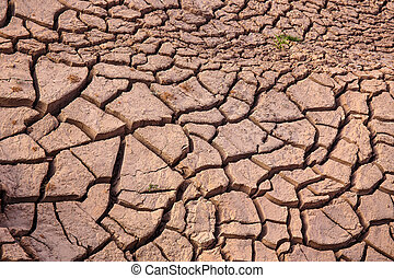 cracked earth near drying water