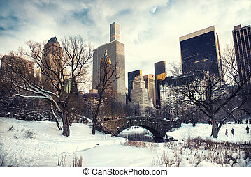 Central Park, New York City at Gapstow bridge under the snow...