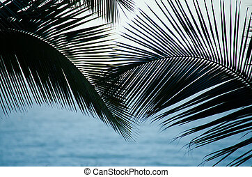 Palm fronds over blue ocean