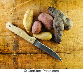 Fingerling Potatoes with Knife - Fingerling potatoes in...