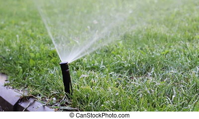 Watering the Lawn - Automatic Irrigation System Machine...