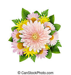 Aster flowers bouquet isolated on white
