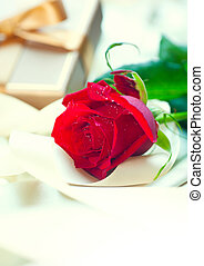 Rose and gift box. Valentine's Day red rose and gift with...