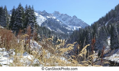 a scenic view of beautiful snowy mountains on the powerful...