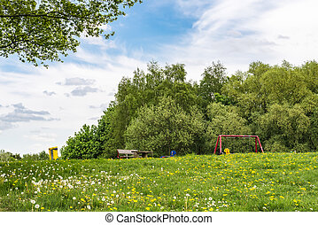 Blooming dandelion on green meadow in amusement park for...