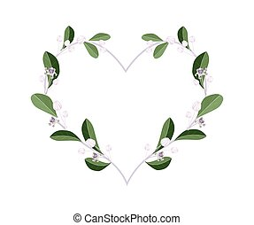 Calotropis Gigantea Flowers in A Heart Shape - Love Concept,...