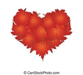 Red Maple Leaves in A Heart Shape - Love Concept,...