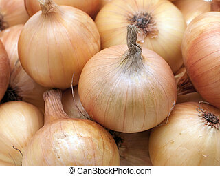 Onion food - Healthy onion vegetable food for freshness...
