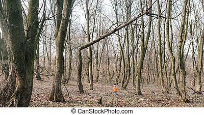 girl standing under a broken tree