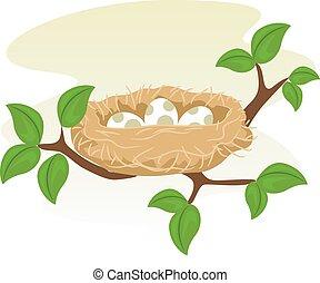 Birds Nest and Egg