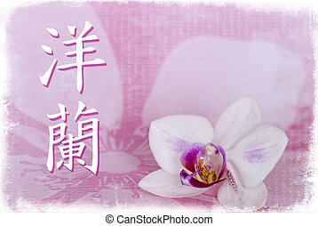 Orchid chinese