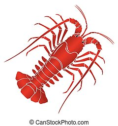 Vector boiled spiny or rock lobster
