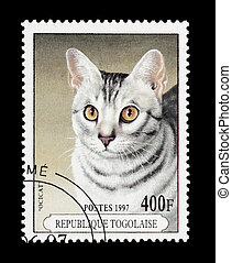 ocicat - mail stamp printed in Togo featuring a rare breed...