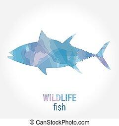 Wildlife banner - fish tuna - Wildlife banner on white...