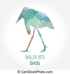 Wildlife banner - birds marabou - Wildlife banner on white...