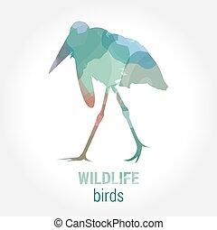 Wildlife banner - birds marabou - Wildlife banner on white...