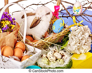 Easter still life with eggs and rabbit in basket. - Close up...