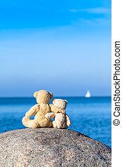amigos, dos,  teddy