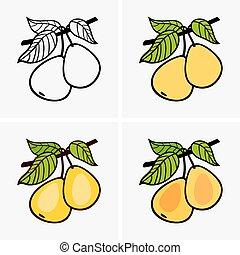 Pears -  Set of pears