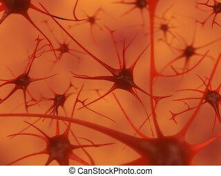 neurônios, cérebro