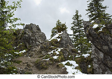 Mountains spring - Spring in the mountains. Tatra Mountains....