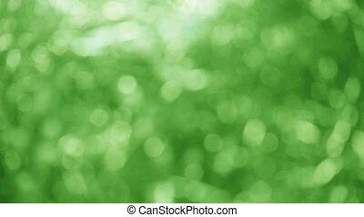 green nature background - defocused green abstract good for...